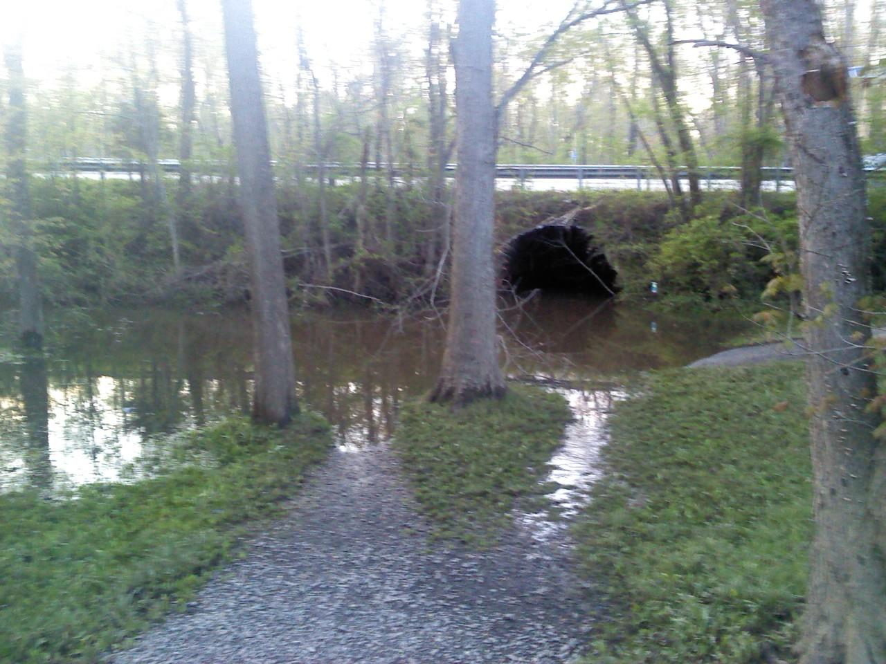 flooded towpath at Kingston Locks